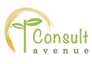 logo consult avenue